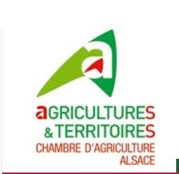 Logo-CA-Alsace