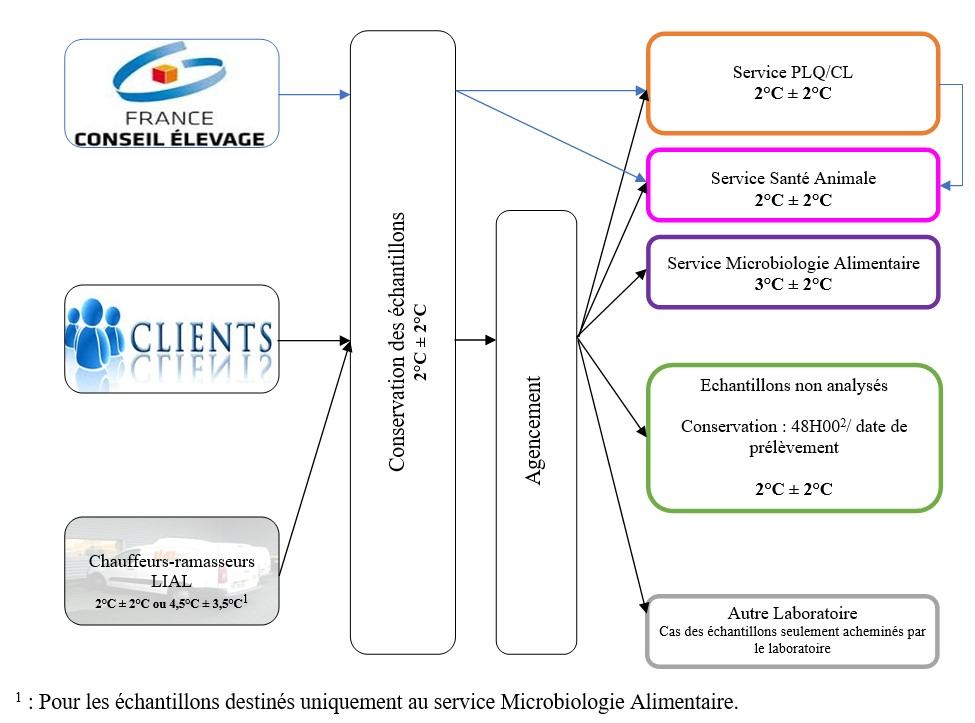 Logigramme Agencement